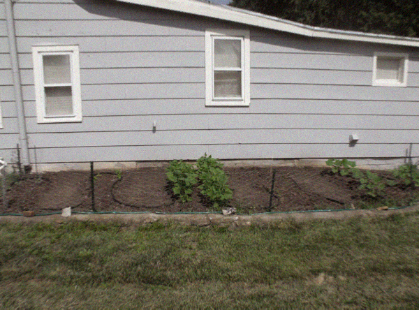 DIY Gardening and Composting