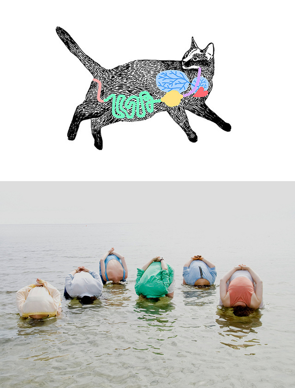 cat illustration by Oisin Orlandy; photograph by Ida Nordung