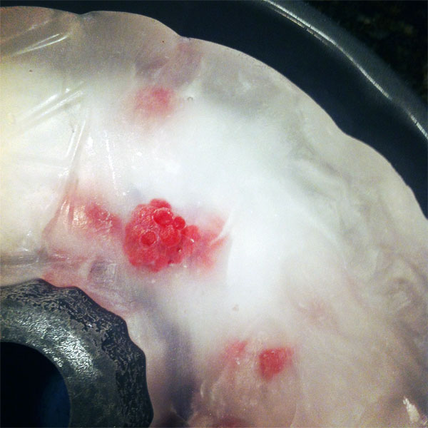 ice with frozen raspberries