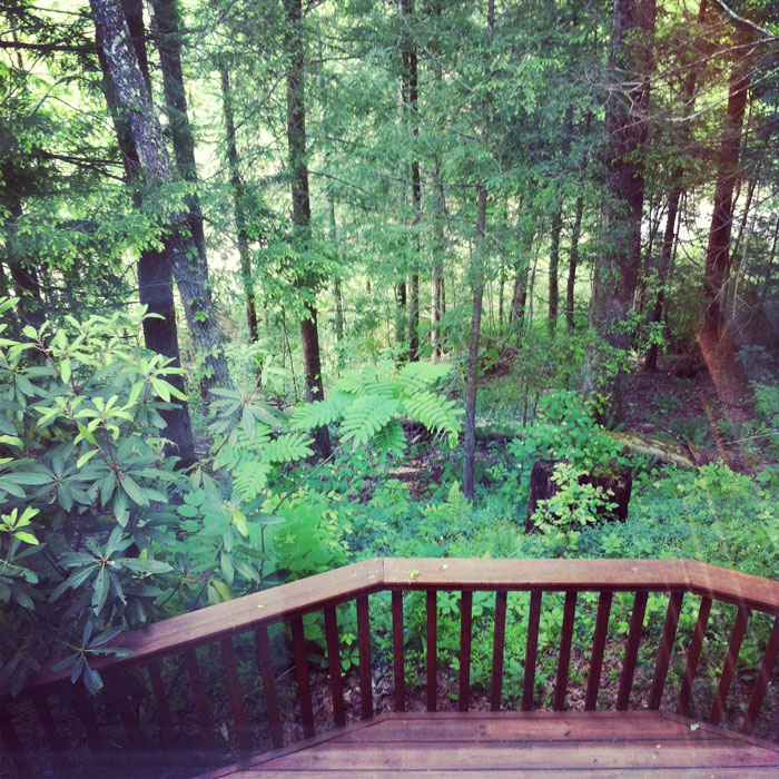 the Smoky Mountains cabin view at Gatlinburg's Buckhorn Inn
