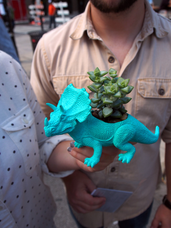 bright aqua triceratops dinosaur planter with succulent