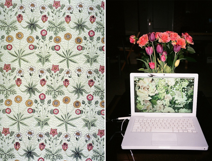 """Daisy"" wallpaper by William Morris: photograph by Beata Wilczek"