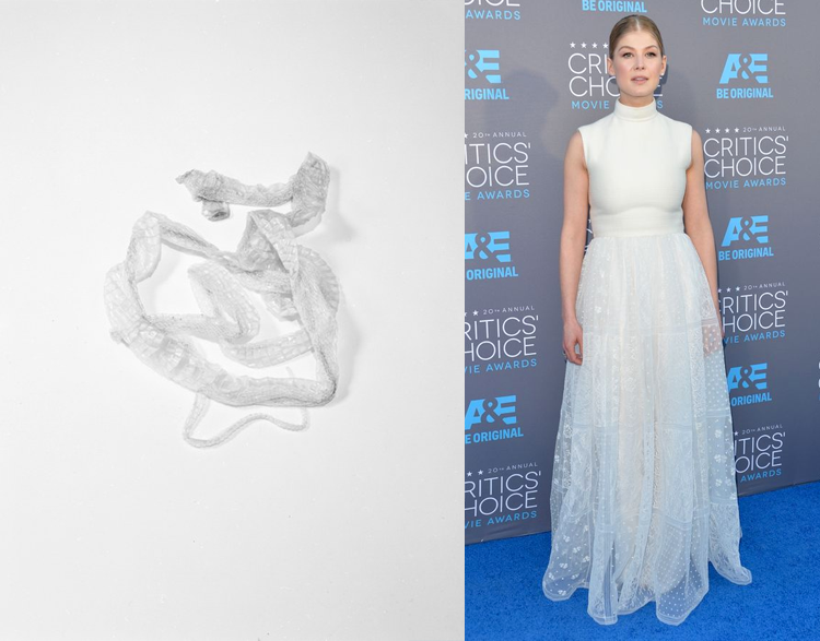 Snakeskin by Tealia Ellis Ritter; Rosamund Pike at the 2015 Critics' Choice Awards
